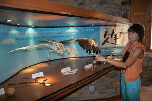 Eco museum Ainsa