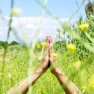 Wollen wir gemeinsam meditieren?