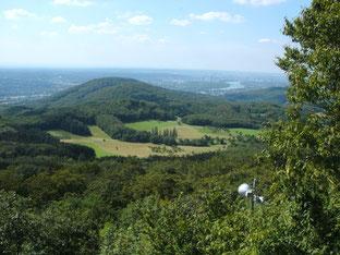 Blick vom Oelberg (Foto: D. Steinwarz)