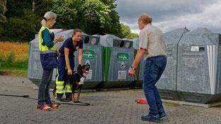 Appenzeller Sennenhund ALeno zeigt schon am Start große Begeisterung für seine Arbeit als aMantrailer.