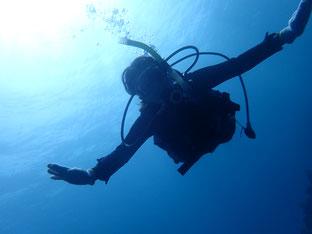 石垣島でのんびりダイビング「明けたかな~」ヒートハートクラブ