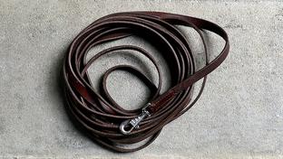 Wir empfehlen zum Mantrailing eine 7,5 Meter lange Leine aus Leder oder Biothane.