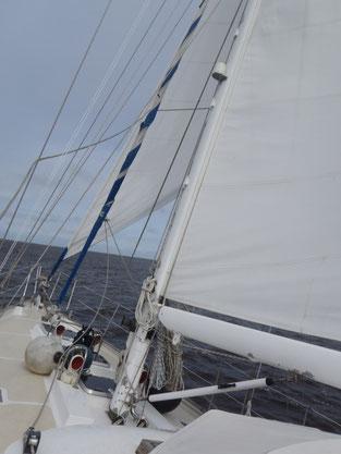 Das erste Mal segeln