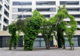 06. 06. 2016 - Wohnen im Grünen