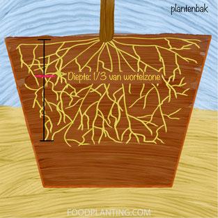 tensiometer, plantenbak