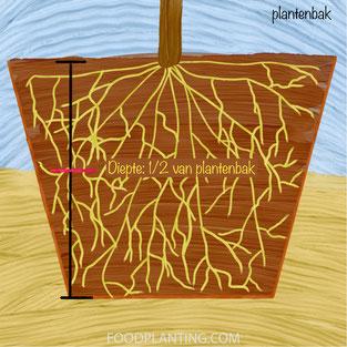 tensiometer plantenbak