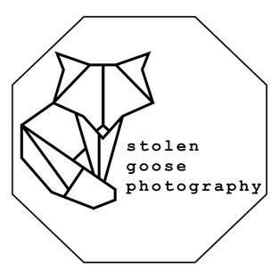 Bild: stolen goose photography