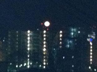 ご覧になりました〜昨日今日と夕方6時過ぎの月。