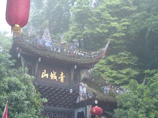 Jahrtausendealte Tradition: Die Traditionelle Chinesische Medizin