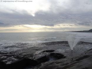 Wasser Fontaine am Muriwai beach
