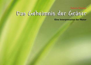 Valerie Forster, Bücher, Books on Demand, Das träumende Pfauenauge
