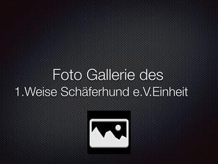 Bilder 1. Weisse Einheit  Hünxe 2012
