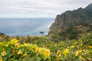 Uitzicht vanaf hoogste punt Madeira