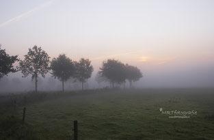 Tips voor het fotograferen in de mist
