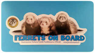 Vetrofania Ferrets on Board