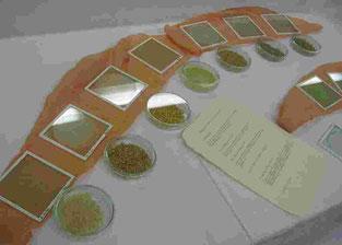 Kristallisationsbilder von verschiedenen Getreidesorten