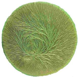 Kristallisationsbild, Bio-Buttermilch