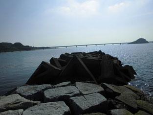 下関市 山陰・日本海側のショアジギングの釣り場