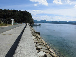 田ノ浦漁港 横の岸壁 はこちらからどうぞ