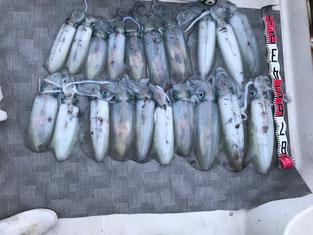 ブルーアクエリアス 釣果の写真