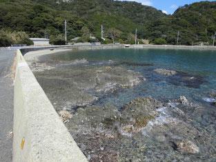 青海島 道路沿い はこちらからどうぞ