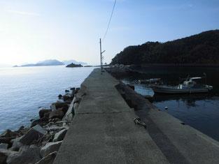 周南市のアオリイカの釣り場