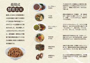 酵素玄米「蔵っCars'」3つ折りリーフレット