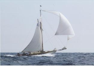 Segel Segelboot Wellen