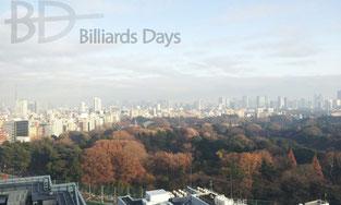 新宿高島屋からの眺望。手前の森は御苑