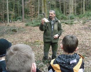 Wildhüter Zeigt Schüler*innen einen Gamsschädel