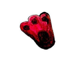 Wampel roter Fußabdruck, Wampel fuss, Wampel.net, Wampel der Held von Wampelonia, Bestseller Buch, Kinder Bestseller