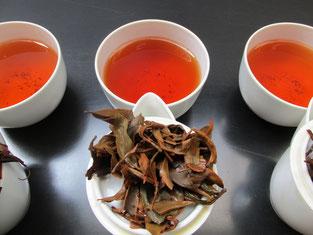 国産紅茶グランプリ