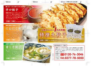 金星食品パンフレットデザイン