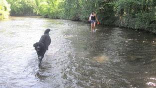 Ausflug an die Fischa