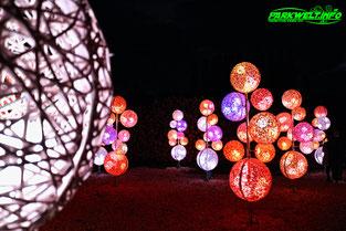 Lumagica Neuwied Lichtkunst 2021 Lichter Rasselstei Gelände Industriegelände Lichterpark