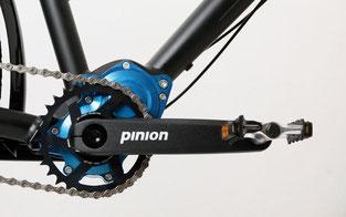 Unverwüstlich: das Pinion-Getriebe