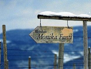 Anfahrt zum Weingut Monika Fanti im Klustal