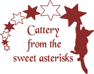 Cattery von den sweet asterisks