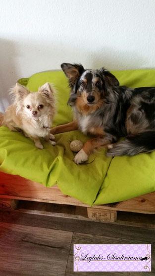 Bella & Tinkerbell