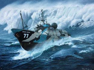 Bateau Sea Shepherd dans tempête