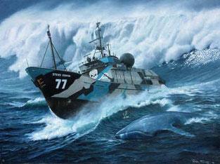 Navire Sea Shepherd