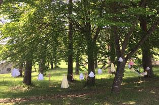 DIYウェディング ハンドメイドウェディング 手作りウェディング 結婚式DIY こだわりウェディング マーキーライト LOHAS ロハスウェディング 森ウェディング スローウェディング Slow wedding ナチュラルウェディング 創作 オリジナルウェディング コンセプトウェディング ガーデンウェディング ガーデン 森 林 木漏れ日 希望にそったプラン 自然 山ウェディング リゾート婚 開放的 そよ風 アットホームウェディング 一日一組 貸し切りウェディング 暖かい雰囲気 カジュアルウェディング