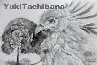 絵画 立花雪 YukiTachibana お花のお医者さん
