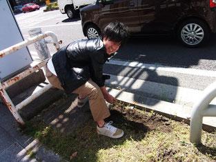 固くなった土を耕します。