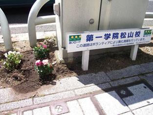 愛媛県のあいロードに認定されています。