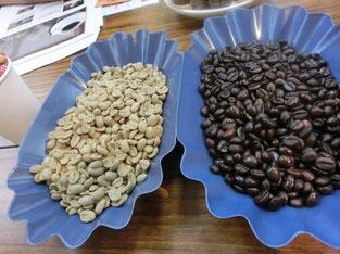 焙煎前と焙煎後の豆の違い
