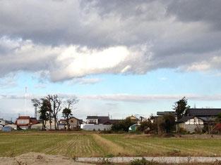 家の周りは屋敷林が囲んでいましたが、その多くは津波による塩害で失われてしまいました