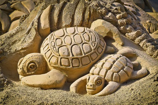 sculpture de sable de tortue pour site d'artiste par e-cime