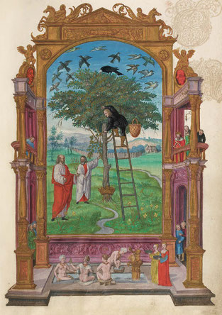 L'Arbre philosophique, f. 15r. Temple de Paris