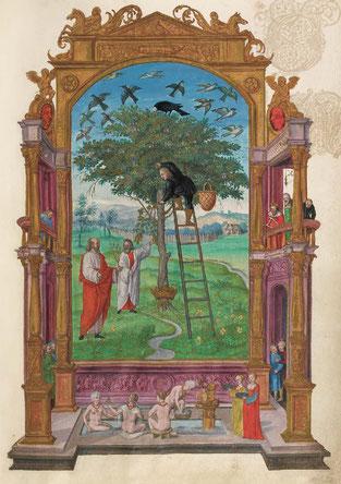 L'Arbre philosophique, f. 15r. Temple de Paris